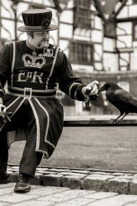 Beafeater con los cuervos de la Torre de Londres