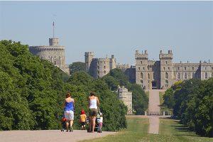 windsor castillo