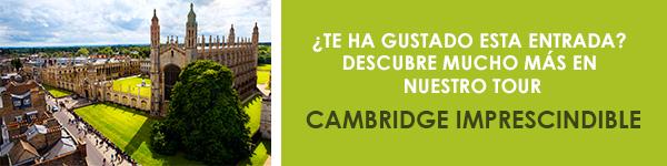 Tour Cambridge Imprescindible